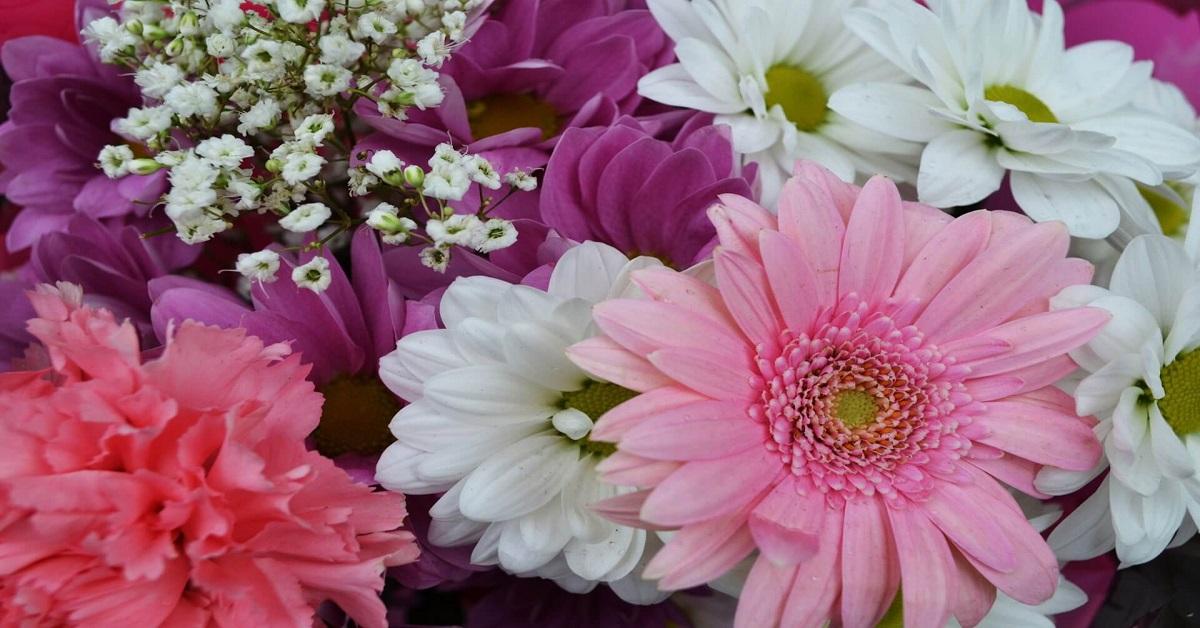 Contributi a fondo perduto Floricoltura