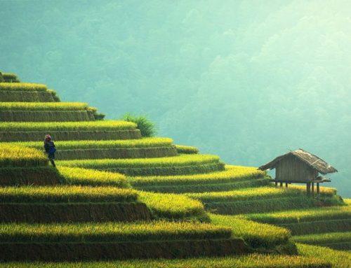 Umbria: aiuti avviamento di impresa per le attività extra-agricole