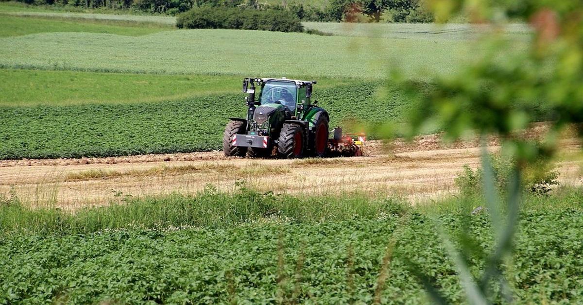 Contributi Agricoli Lazio