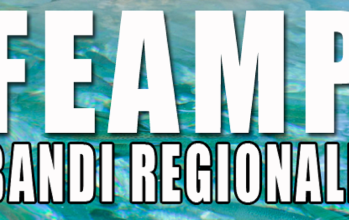 Feamp Bandi Regionali